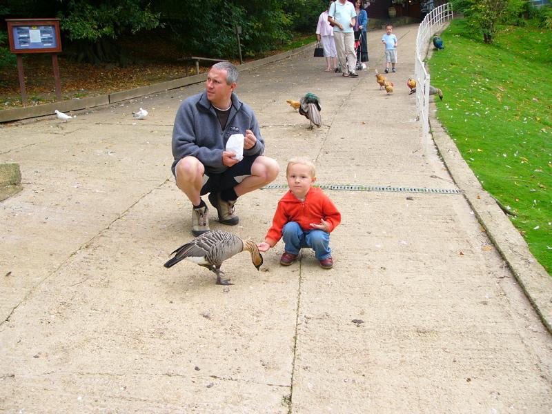 Al and Morgan feeding the ducks