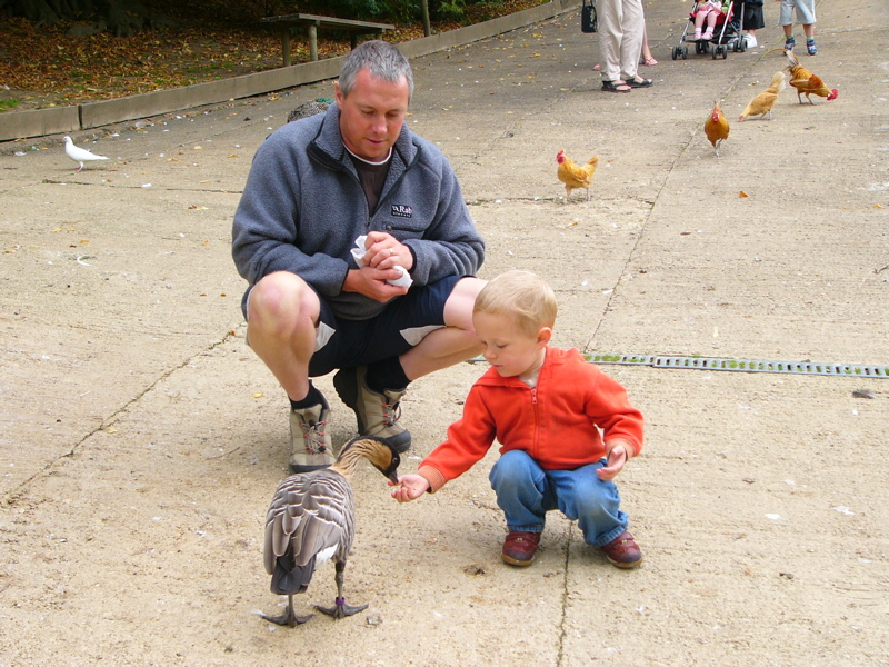 Feeding the Ducks at Prinknash Abbey