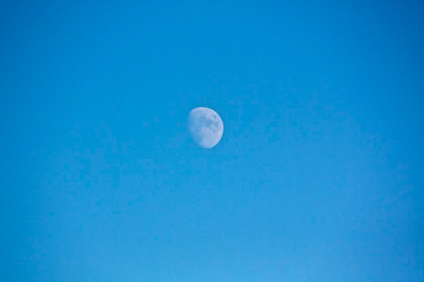 Midday Moon